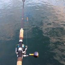 2017 鮭釣りはや…