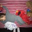 バイリンガル息子の寝…