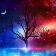 天秤座新月と愛の女神…