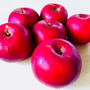 仁木町りんごでパンケ…