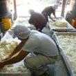 蒸米から麹造りへ
