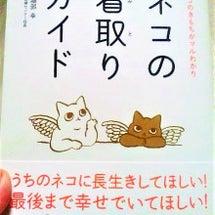『ネコの看取りガイド…