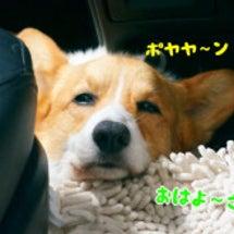 車で夏旅 ~福島で2…