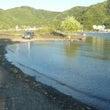 今日の河口湖 フライ…
