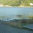 今日の河口湖 水位上…