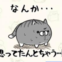 【ご相談】寒冷地用エ…