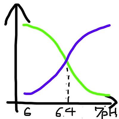 水質について、その2。pHとコケのお話し。の記事に添付されている画像