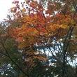 台風と秋景色