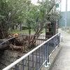 台風の足跡の画像