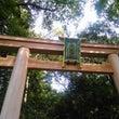 11/11 大神神社…
