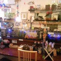★カフェのあ&のあ水…