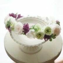 【花冠】カップ咲きミ…