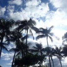Hawaii♡