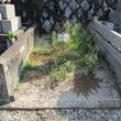 福岡 足立霊園 お墓…