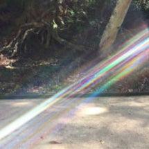 光と龍に繋がる神社詣…