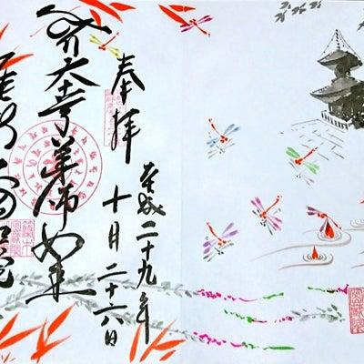 【愛知】天台宗 医王山 薬師寺「密蔵院」でいただいたステキな【絵入り御朱印】の記事に添付されている画像