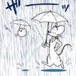 《続》雨続きの日々