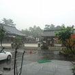 京都 瑞専寺本山から