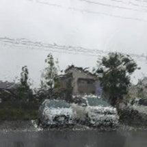 台風接近の中、今年3…