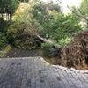 台風21号と22号の画像