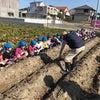年長(^-^)芋掘りの画像