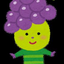 秋が旬の果物♪