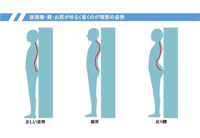 「壁に対して腰の反り」の画像検索結果