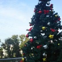 クリスマスリース ワ…
