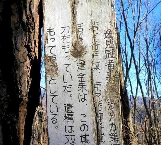 【写22】源太ヶ城