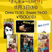 ●明日のライブ●