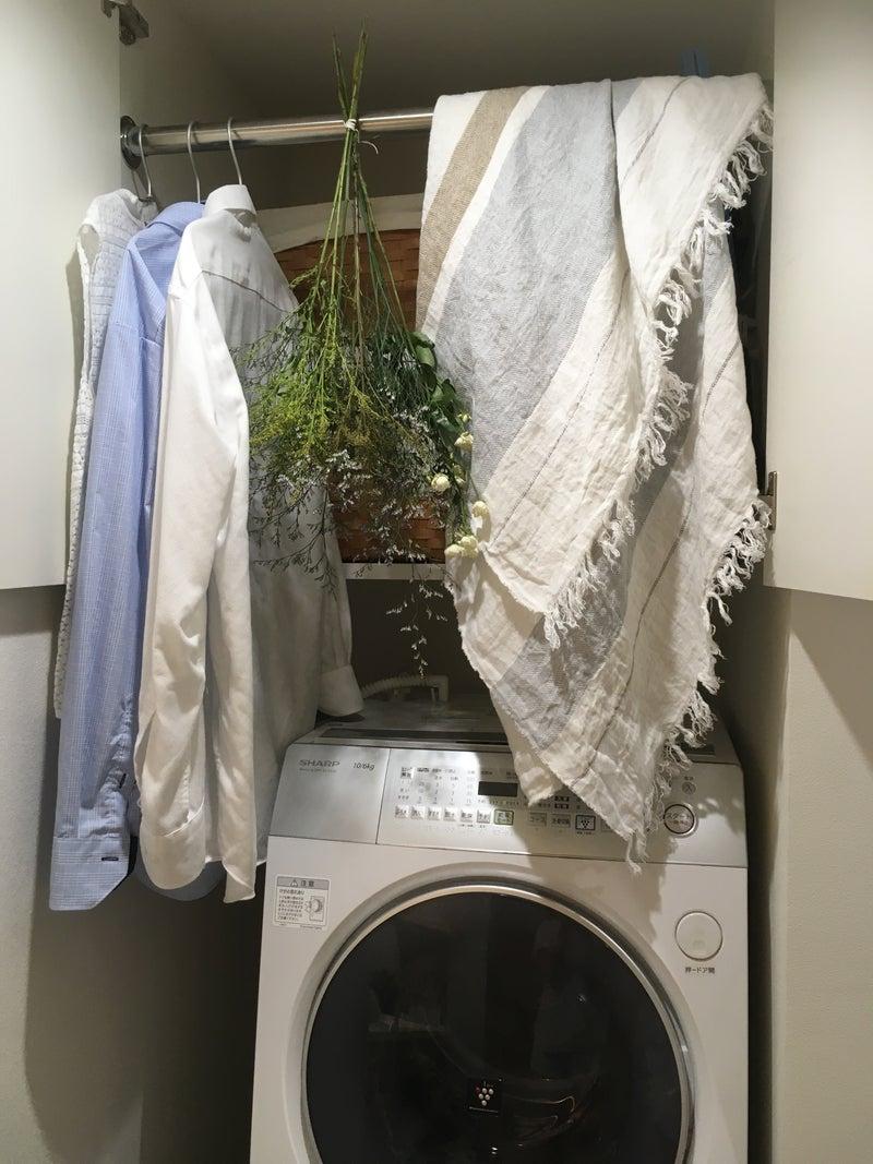 機 洗濯 代 乾燥 電気 付き 機 乾燥機付き洗濯機に変更 生活に変化が!【早急実施】