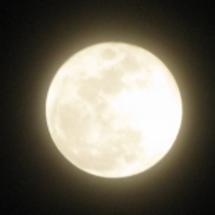 明日は満月 今月の運…