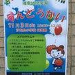 湘南幼児  運動会