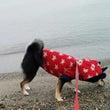 家族旅行in琵琶湖Ⅱ