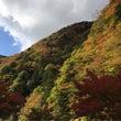 梅が島に紅葉狩り(o…