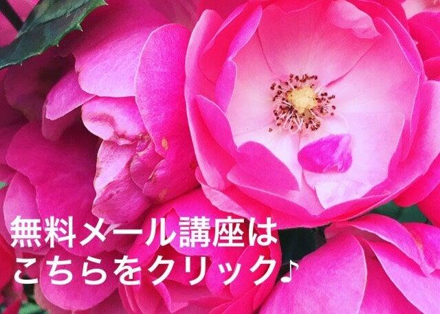 IMG_3632.jpg