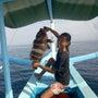 バリ島サーフィンガイ…