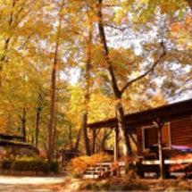 落ち葉の中でキャンプ…