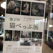 第2回猫べっぷ展