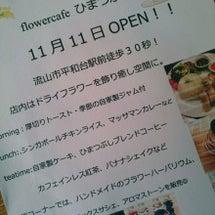 Flower caf…