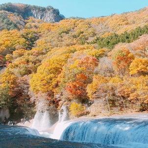 本日も穏やかな小川町へお越しいただきありがとうございます。の画像