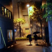 夜の眼差し 3