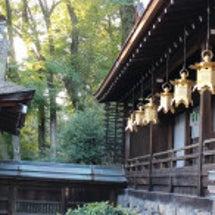 京都・「上賀茂神社そ…