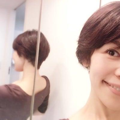 バレリーナのヘアスタイル事情の記事に添付されている画像