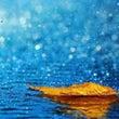 雨の日は。