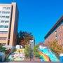 名城大学 文化祭