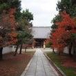 妙顕寺で紅葉を楽しむ…