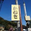 佐島の魚料理『かねき…
