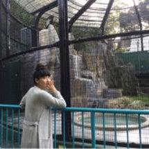 動物園で撮影
