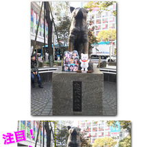 渋谷というところ